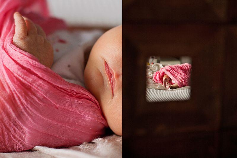 Baby photographers edmonton